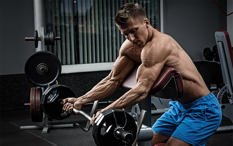 Man in blue shorts performing barbell preacher curl